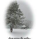 Merry Christmas from across the miles. by artgoddess