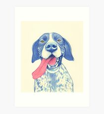 Jola #01 - German Short-Haired Pointer Art Print