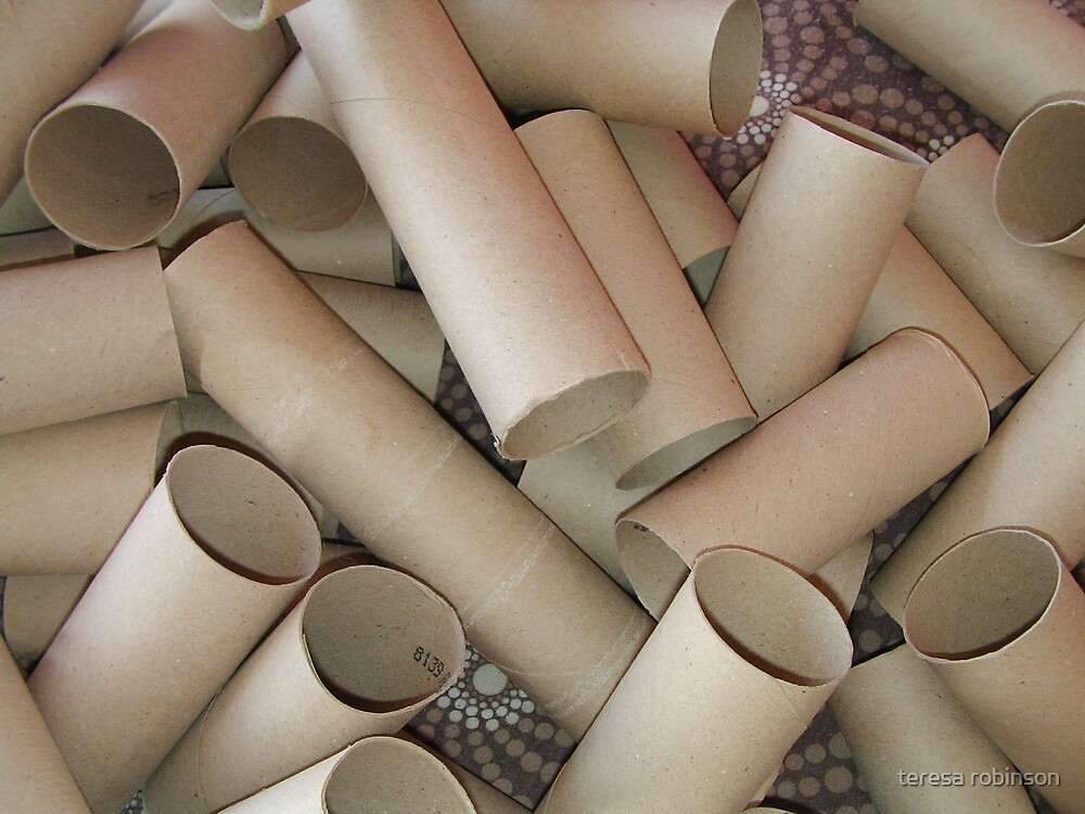 wheres all the loo roll? by teresa robinson