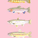 Pink Trout by JGVart