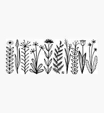 Blumenmuster scharz/weiß / flower pattern Photographic Print