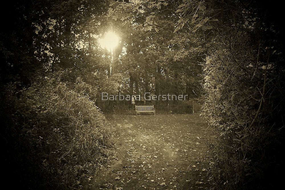 Come sit awhile... by Barbara Gerstner
