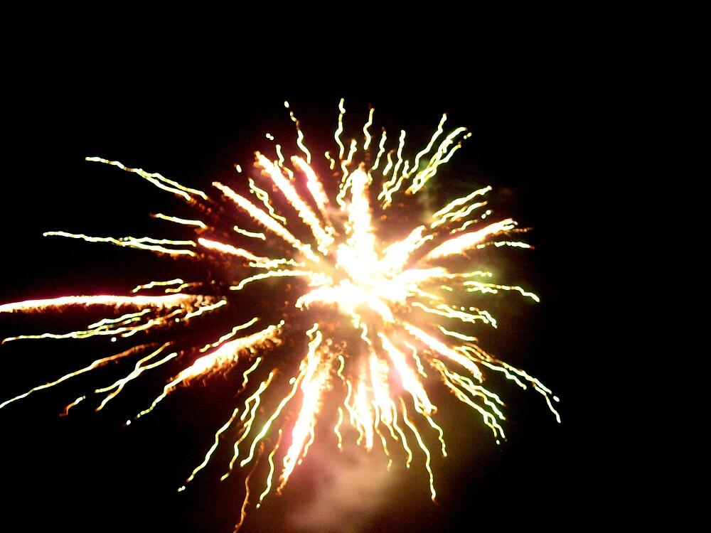Fireworks 4 by junebug076