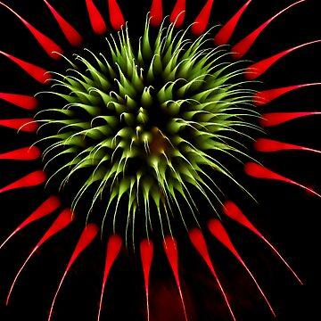 Fireworks C9 by PugH00