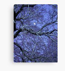 Goodnight Moon: Canvas Prints | Redbubble