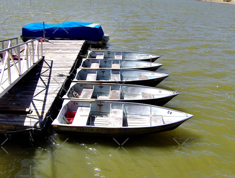 """""""Row"""" Boats by Kimberly Miller"""