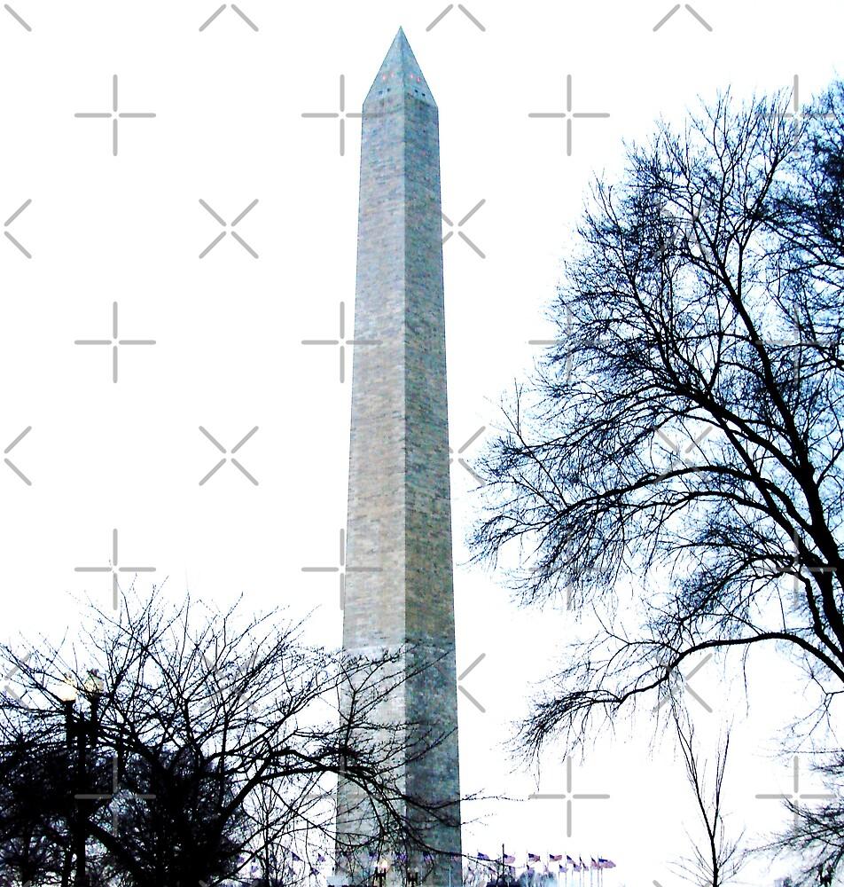 Washington Monument by Kimberly Miller