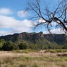 Queensland High Country, near Clermont. Australia. by Rita Blom