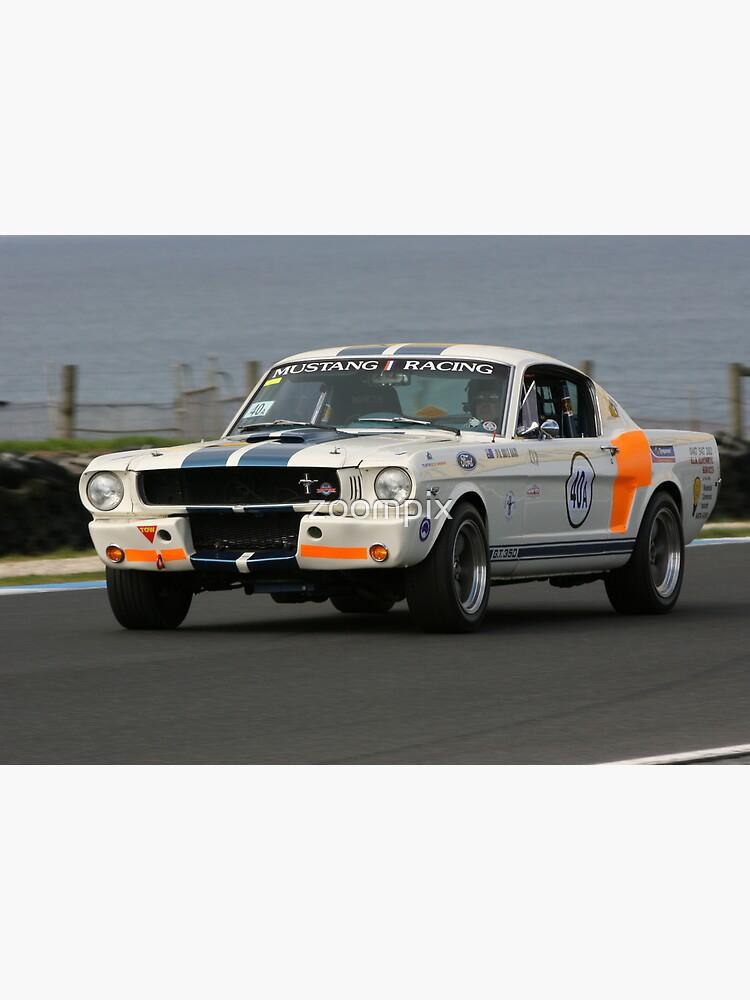 GT 350 by zoompix