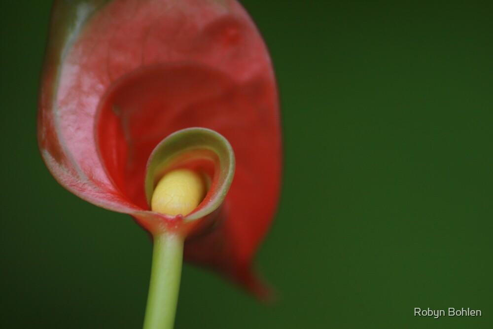..new leaf by Robyn Bohlen