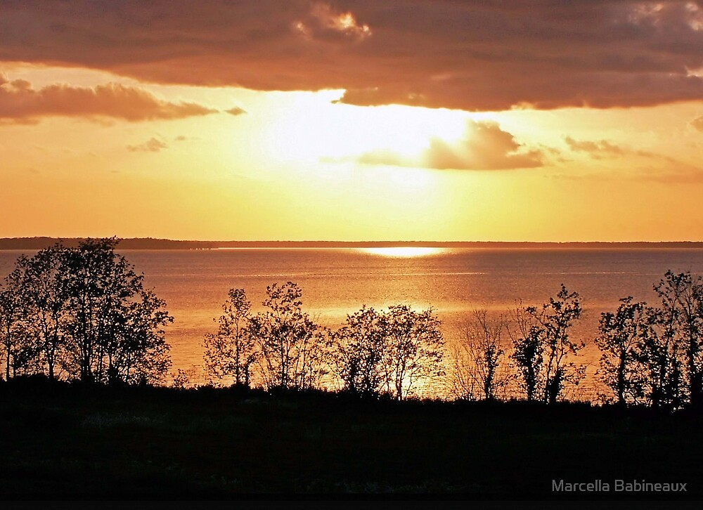 Natures Gold by Marcella Babineaux