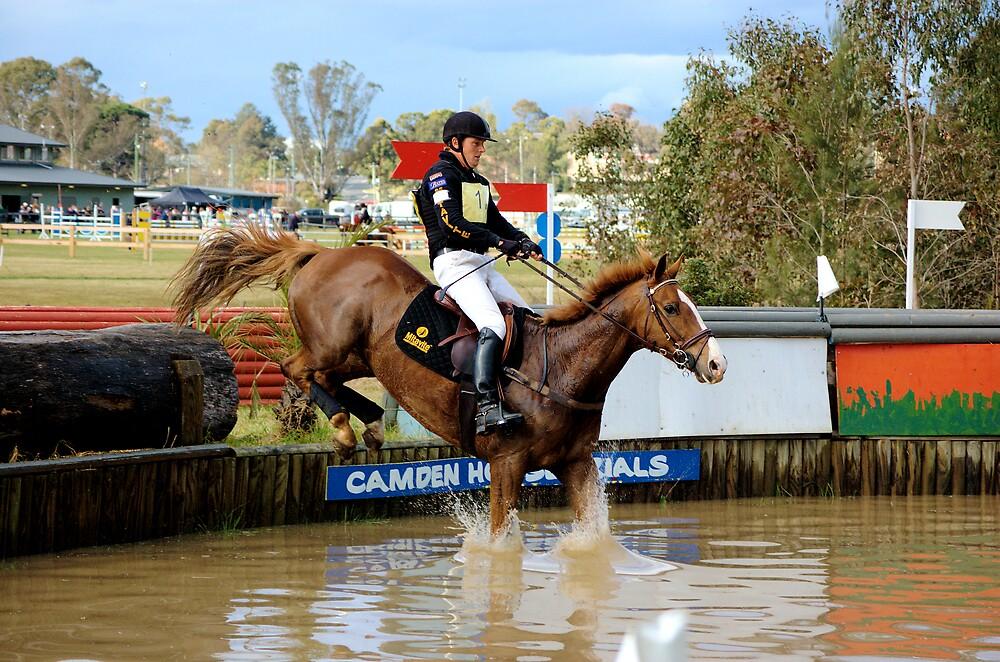 Splash down by David  Hall
