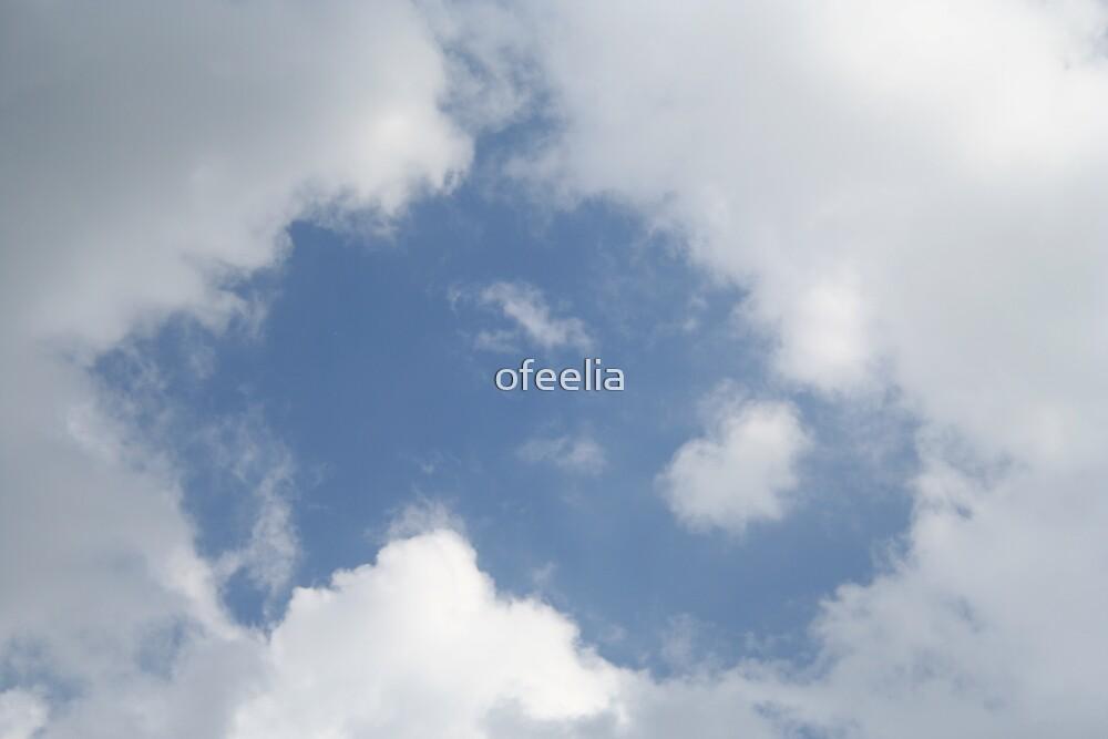 heart in the sky  by ofeelia