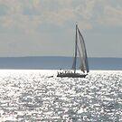 Silver Sea by vasu