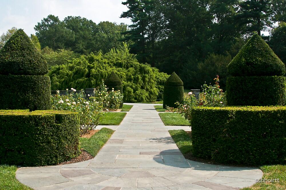 Shaped Bush Garden by sshhoirtt