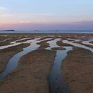Purple sunset at Nyalanji by Reef Ecoimages