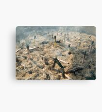Burning incense Canvas Print