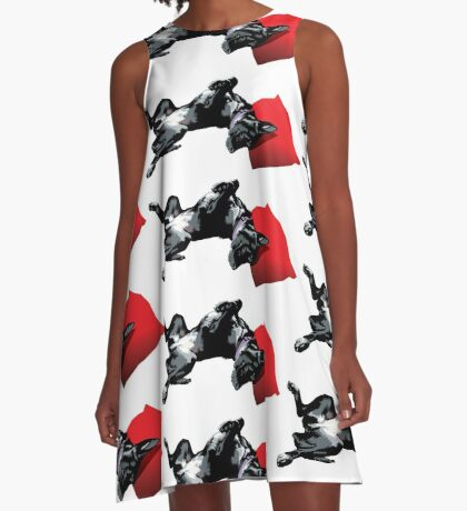 Asha A-Line Dress