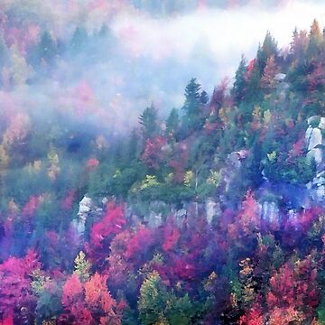 Fog over a colorful fall mountain forest by CatyArte