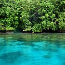 Bougainville Shoreline by Reef Ecoimages