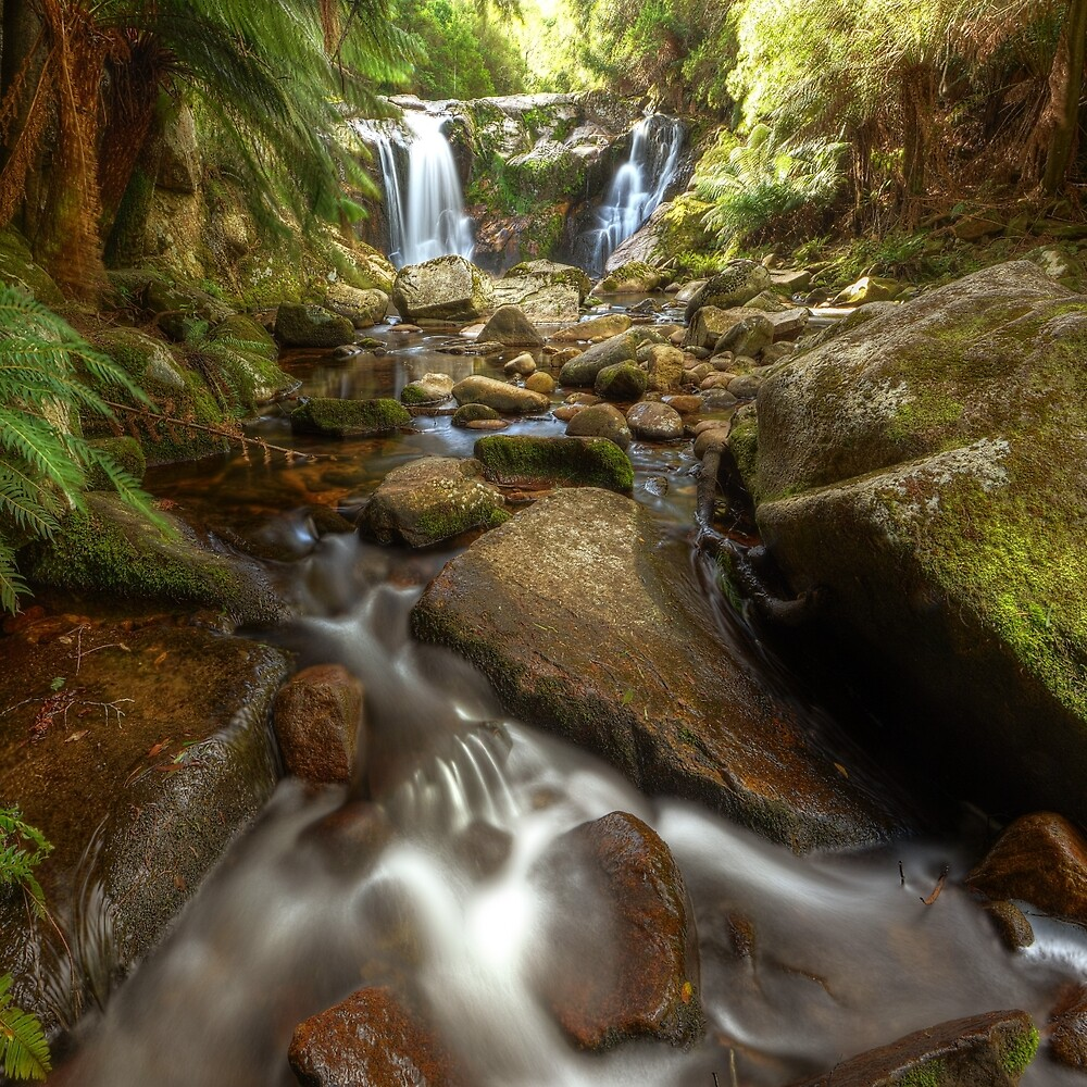 Halls Falls, northeast Tasmania by Kevin McGennan