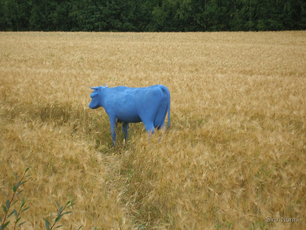 A blue cow on a field by Hannapei