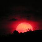 Indiana Sundown by LizzieMorrison