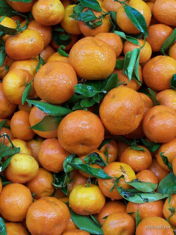 Oranges by mitchell nix