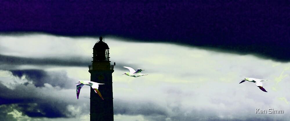 Lighthouse & Gannets by Kenart