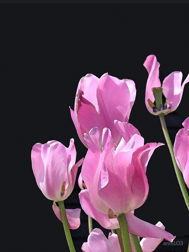 Tulips in the pink by anni103