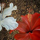 Red and White Hibiscus by Cherie Roe Dirksen