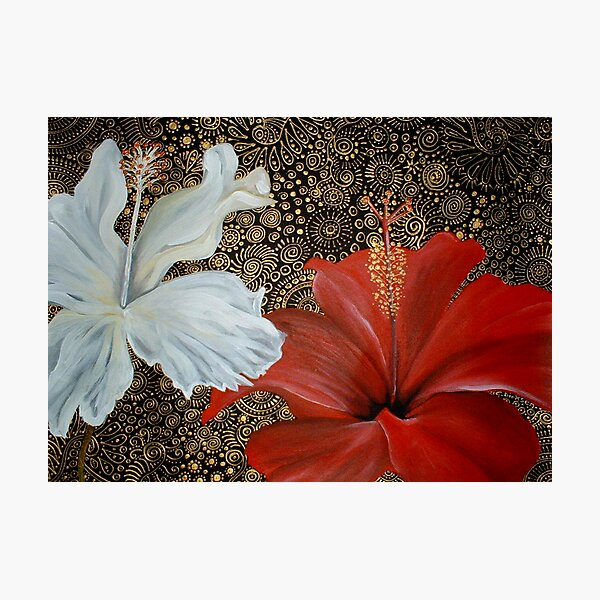 Red and White Hibiscus Photographic Print