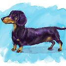 Cute Dachshund Watercolor Doodle by ibadishi
