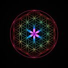 Flower of life in Rainbow by Daniel Watts