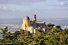 Pena National Palace by Marcel Ilie