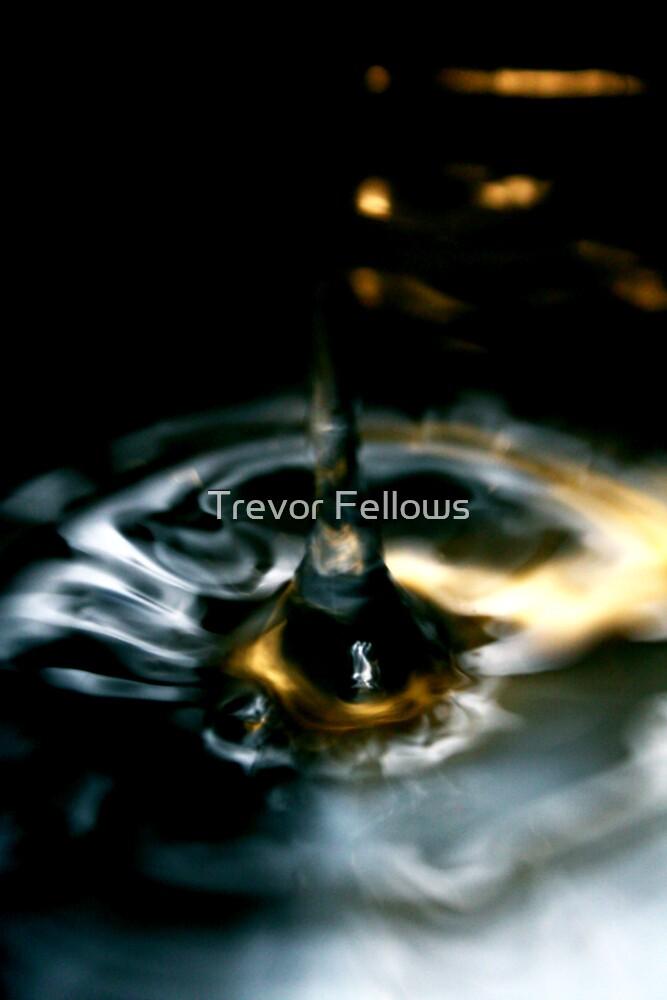 The splash by Trevor Fellows