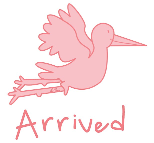 'Arrived', Baby Girl, Pink Stork by rillen