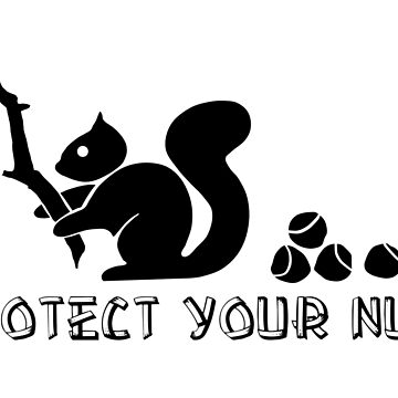 Protect your nuts by RixzStuff