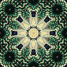 Indian Pattern Teal Green Floral Peacock Feather Mandala  by lfang77