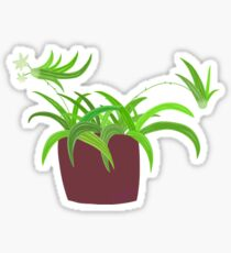 ample lily potted plants Sticker