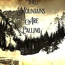 John Muir quote typography mountains are calling and i must go  by lfang77