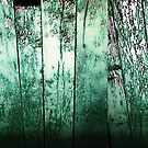 Vintage green barn rustic planks by HEVIFineart