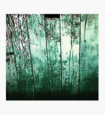 Vintage green barn rustic planks Photographic Print