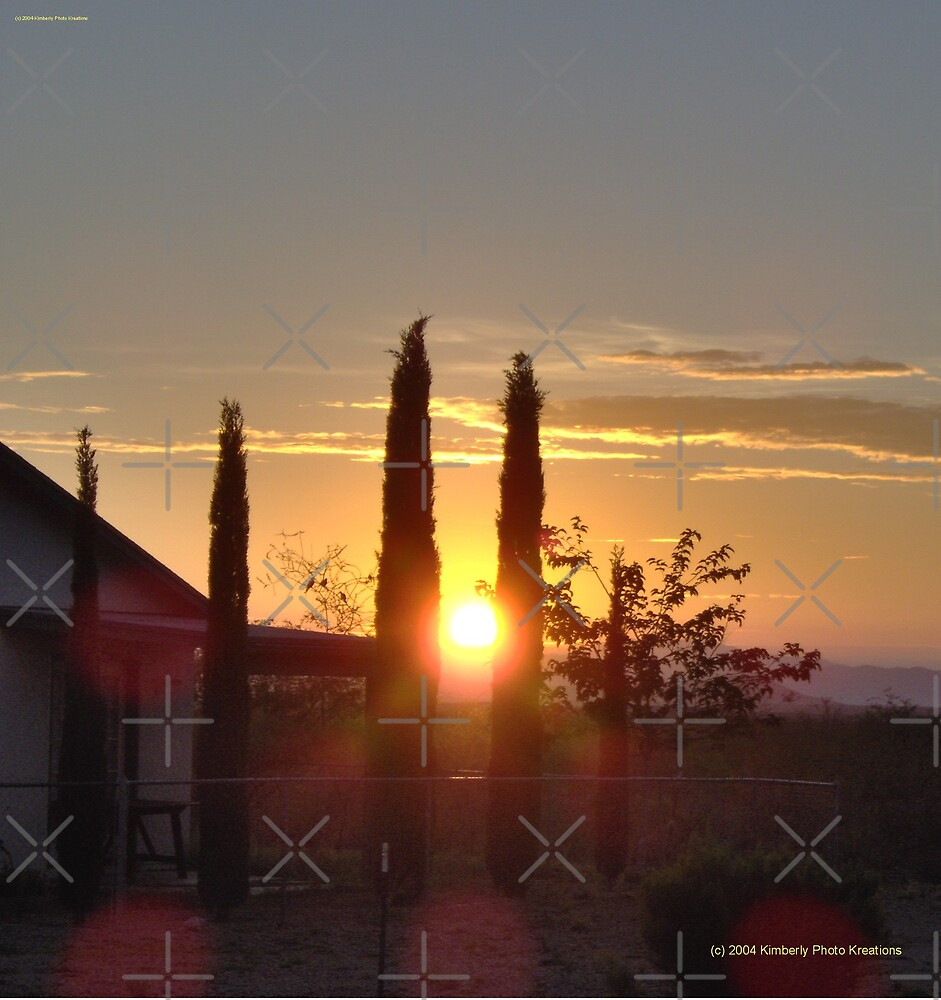 Sunset Through Cypress by Kimberly Miller
