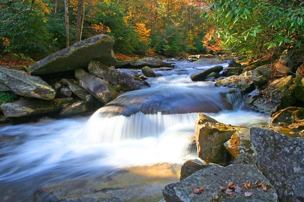 Waterfall North of Brevard by Calvin Hanson