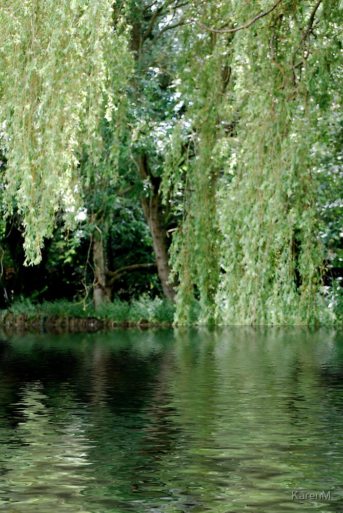 Weeping Willow by KarenM