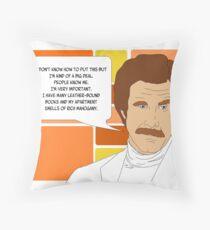 I'm Ron Burgundy? Throw Pillow