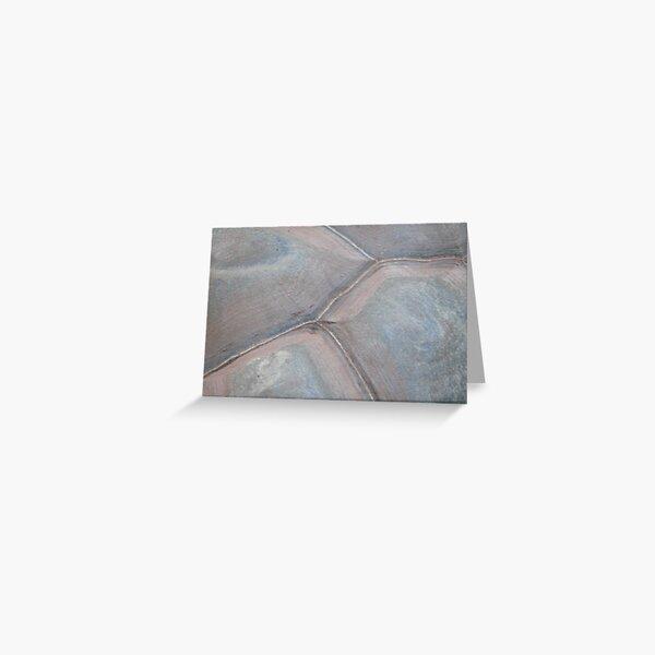 Tortoise shell Greeting Card