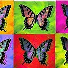 Flutterbies by JanetAnn