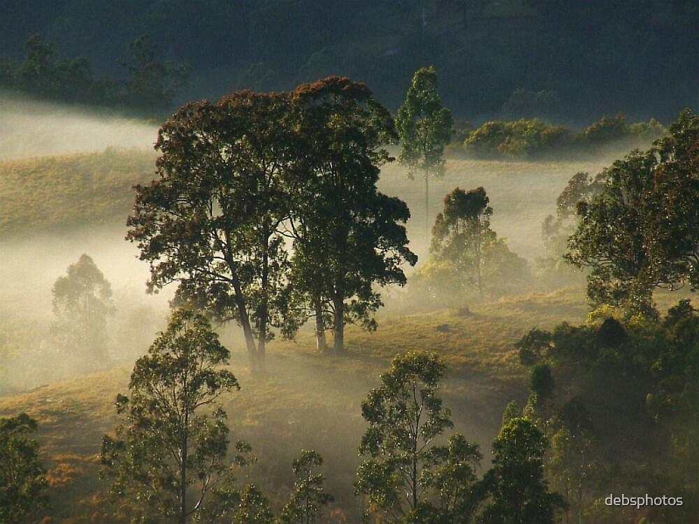 """'Gums & Mist"""" by debsphotos"""
